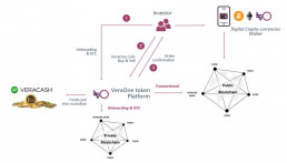 Summary schema of how the VeraOne platform works