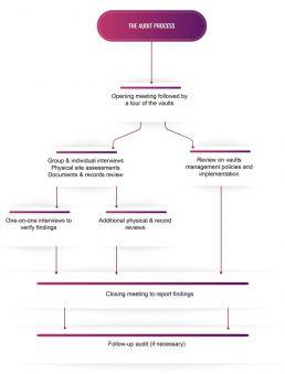 Audit process VeraOne