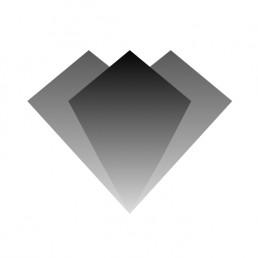 Logo Ngrave